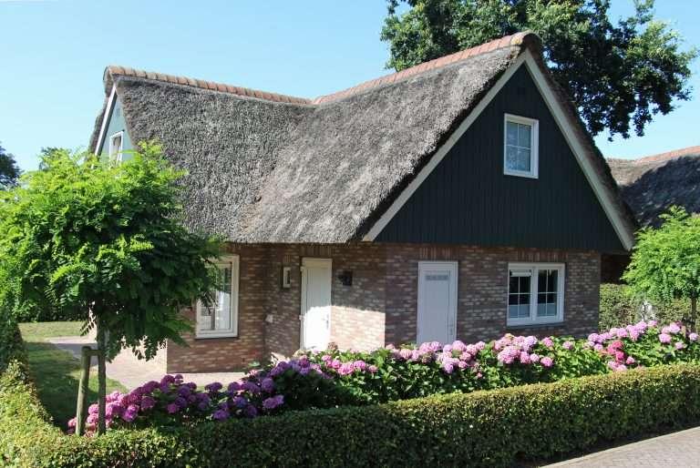 Vakantievilla Lachmöwe in Callantsoog